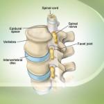 درمان دردهای قفسه سینه و پشت