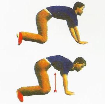therapeutic-exercises-18
