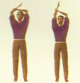 therapeutic-exercises-39